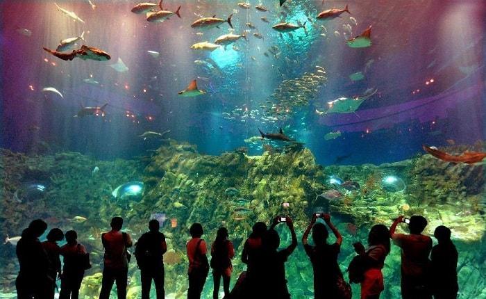 Công viên hải dương Hồng Kông