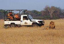 Phượt Zimbabwe