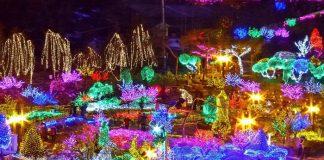 Lễ hội ánh sáng ở Asan Hàn Quốc – những kinh nghiệm khi đến đây