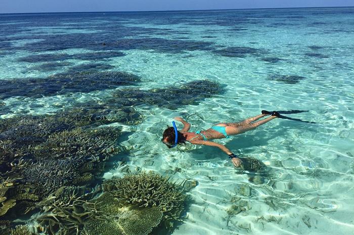 Khám phá đảo Coral Thái Lan – Thiên đường san hô dưới hạ giới