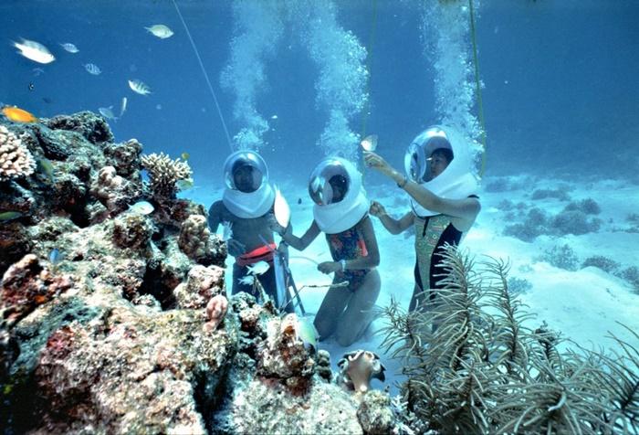 Kết quả hình ảnh cho lặn đảo Coral