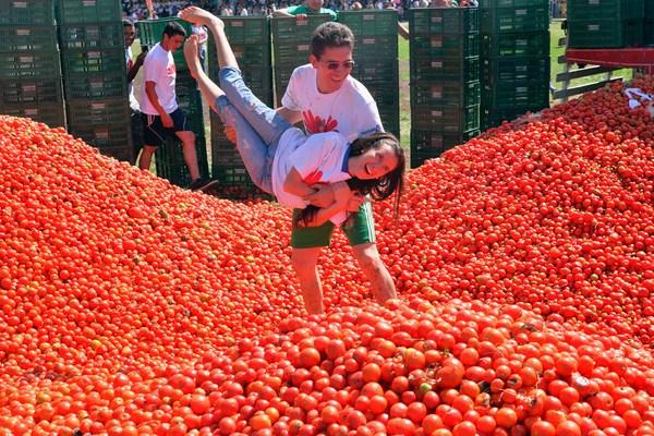 Lễ hội cà chua