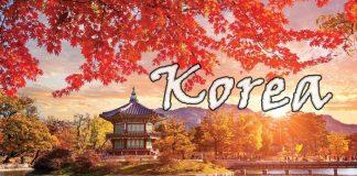 Kinh nghiệm du lịch Hàn Quốc không phải ai cũng biết
