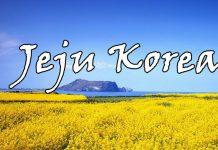 Bật mí kinh nghiệm du lịch Jeju 4 ngày 3 đêm cực vui