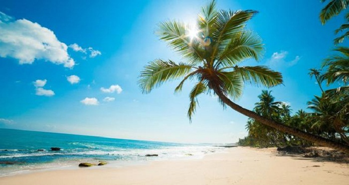 Những cách tiết kiệm chi phí khi đi du lịch Phú Quốc mà bạn nên biết