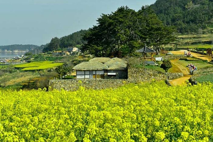 Những địa điểm không thể bỏ qua khi đến Hàn Quốc cho trải nghiệm yên bình, thanh tịnh từ trong tâm