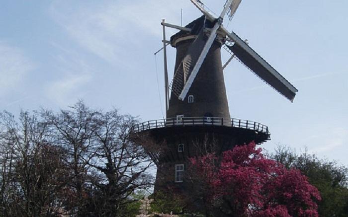 kinh nghiệm du lịch Leiden