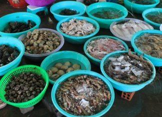 những địa điểm mua hải sản ngon nhất tại Quảng Ninh