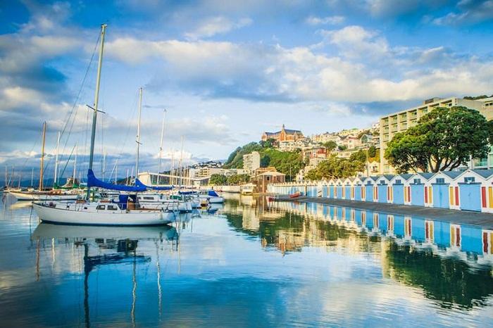 kinh nghiệm du lịch Wellington