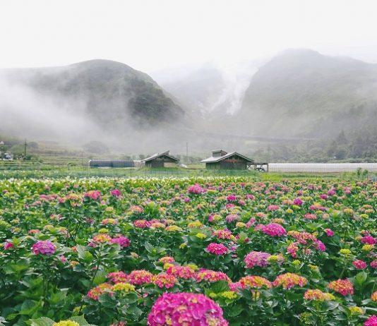 kinh nghiệm du lịch Dương Minh Sơn