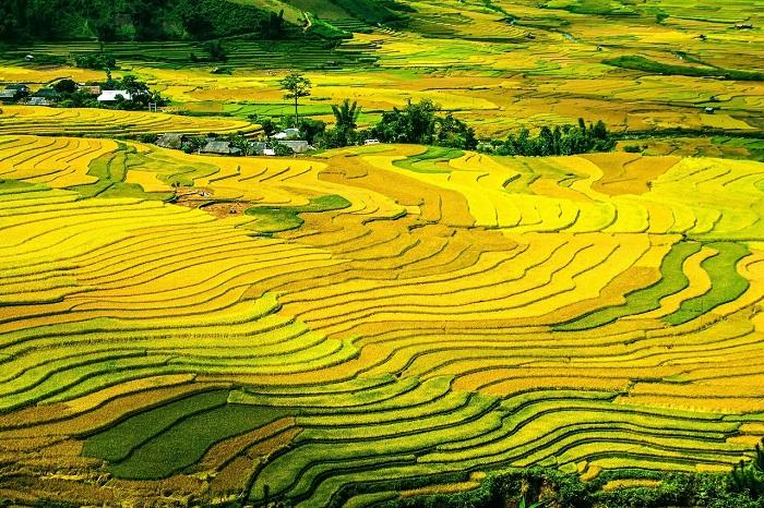 những địa điểm du lịch nổi tiếng tại Điện Biên