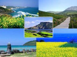 Kinh nghiệm du lịch đảo Jeju 4 ngày 3 đêm