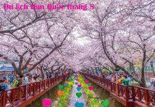 Du lịch Hàn Quốc tháng 8