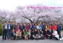 Du lịch Hàn Quốc theo tour