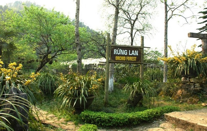 Ham Rong mountain travel experience