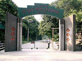 kinh nghiệm du lịch vườn quốc gia Cúc Phương