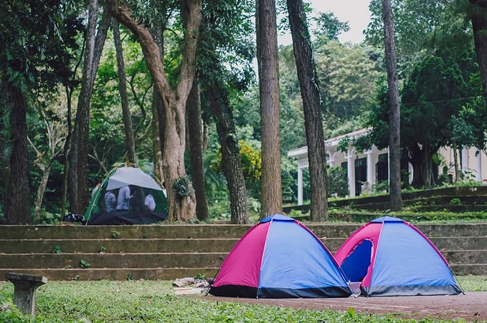 Camp at Cuc Phuong forest