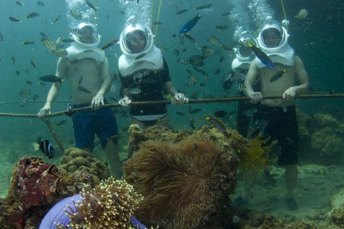 Tham gia các trải nghiệm ở đảo Sapi