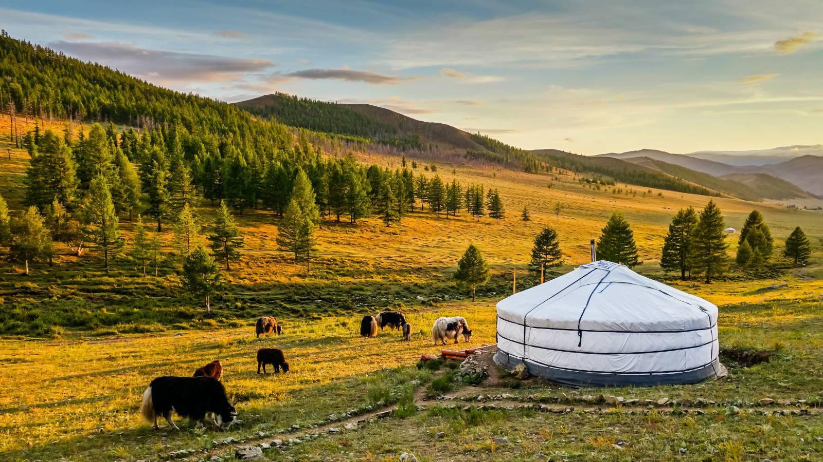 Tổng hợp kinh nghiệm du lịch Mông Cổ mà bạn nên biết trước khi đi
