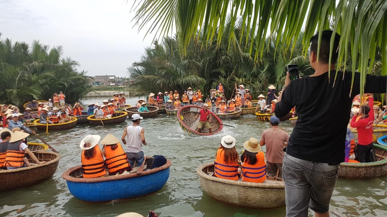 Image result for rừng dừa 7 mẫu