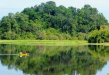 kinh nghiệm du lịch vườn quốc gia Nam Cát Tiên