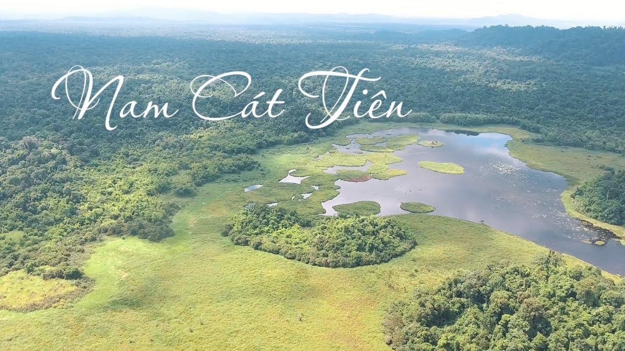 Tổng hợp những kinh nghiệm du lịch vườn quốc gia Nam Cát Tiên