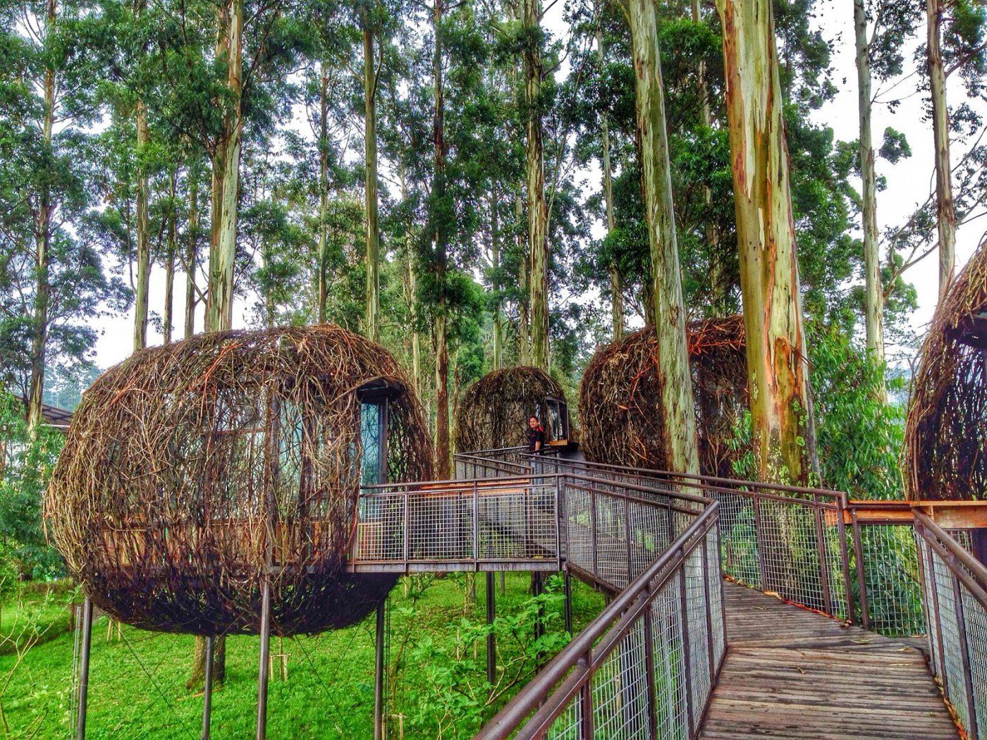 Khu du lịch Dusun Bambu