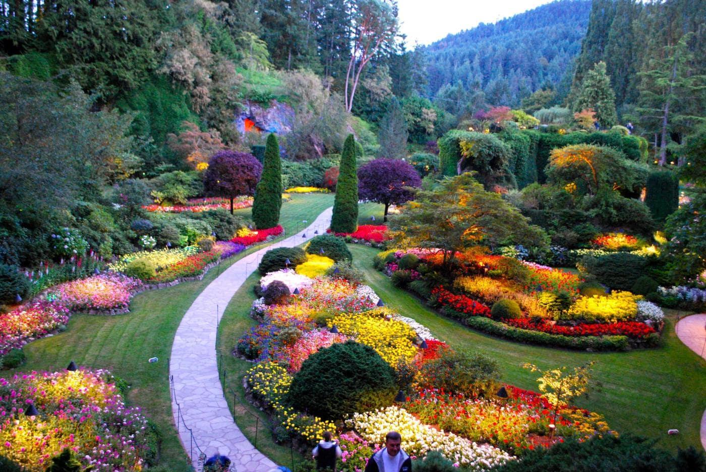 Vườn hoa Butchart Gardens