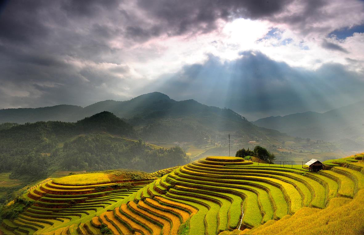 Hoàng Su Phì nổi tiếng với những thửa ruộng bậc thang tuyệt đẹp