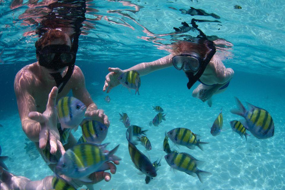 Similan là địa điểm tuyệt vời để lặn biển