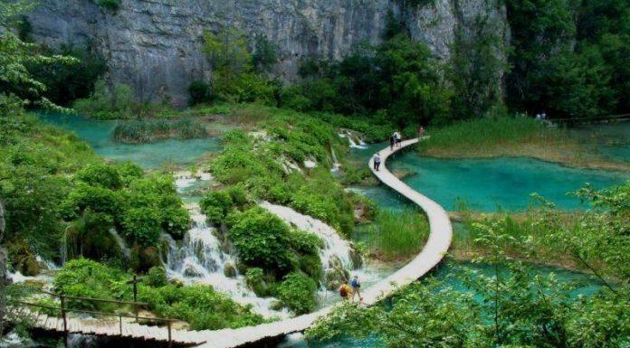 Kinh nghiệm du lịch vườn quốc gia Bạch Mã
