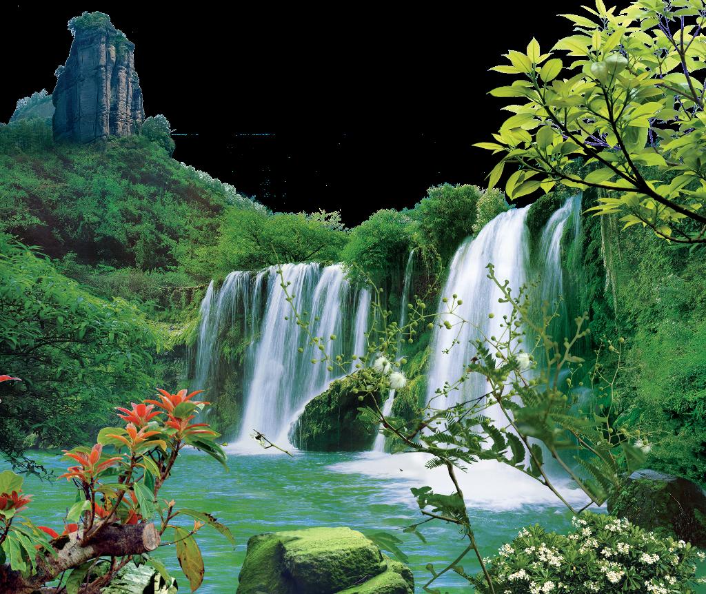 Khu bảo tồn thiên nhiên Bạch Thành