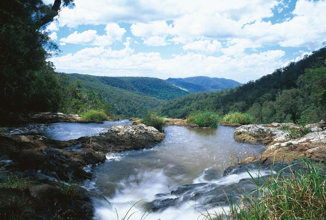Công viên quốc gia Springbrook